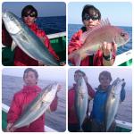 勝浦に釣りに行ってきました☆